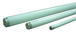 Replacement Fluorescent Tube, 12